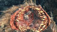 Parasite Larva №4