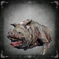 Maneater+Boar-1-.png