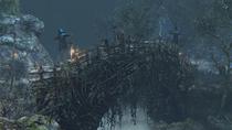 Forbidden Woods №20