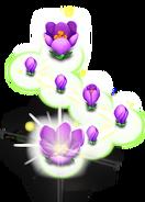 Purplecrocuslink