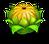 Floweryellow1