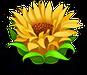 Floweryellow8