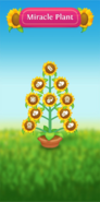 Miracle Plant tree preview