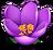 Flowerpurple9