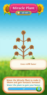 Miracle Plant flower info lives refill faster