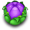 Purplebudicon