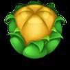 Yellowbudicon