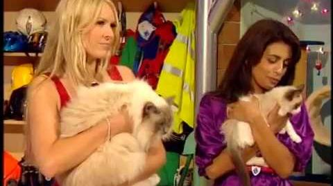 Cookie the kitten and Socks the cat Blue Peter