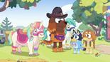 Ponylady-Ponies