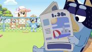 Zoo-screen