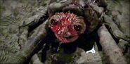 The Boogen Monster