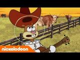 Texas (canción)