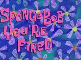 Bob, Estás Despedido