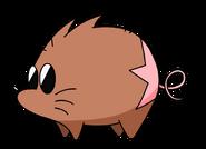 Boota the Pigmole