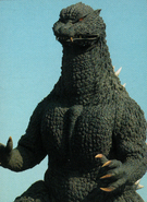 An Unknown Godzilla 2004 Picture
