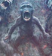 Infant Kong