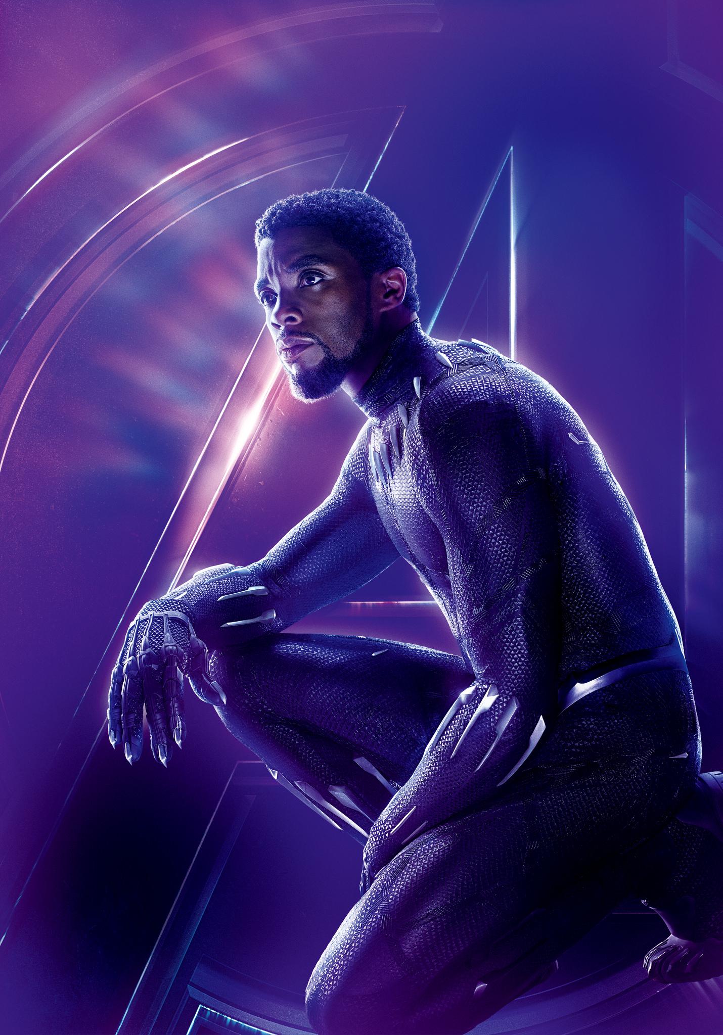 Czarna Pantera (Marvel Cinematic Universe)