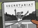 Secretariat: a Life