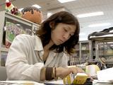 Kohei Horikoshi