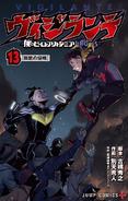 Volume 13 (Vigilantes)