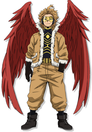Hero Costume