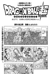 La portada del Capítol 17 (BDS)
