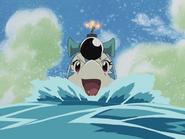 Dolphin Bomber4