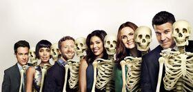 Bones11.jpg