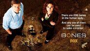 Bones-Plakat