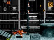 Super Donkey Kong '99 - World 3