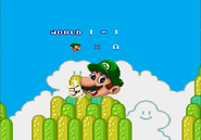 Super Mario 2 (1998) with 0 Lives