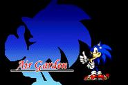 Sonic 3 - Fighter Sonic Air Garden