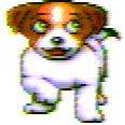 ZDog dog.png