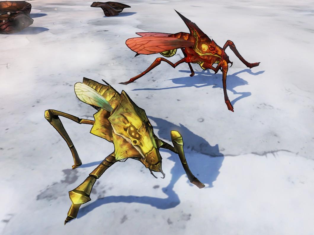 Larval Varkid