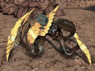Soldier Spiderant-Trap 1