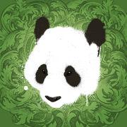 Mr general panda by mr general panda-d381ltz.jpg