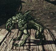 Adult Swamp Skag