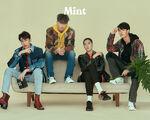 Mint-8