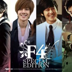 Boys Over Flowers: F4 Special Edition - After Story