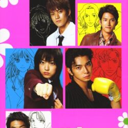 Boys Over Flowers/Adaptations