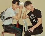 Mint-26