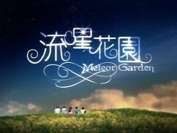 Meteor-Garden-card.png