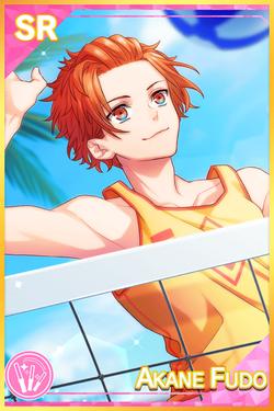 【Beach Volleyball】Akane Fudo Default.png