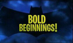 Bold Beginnings!.jpg