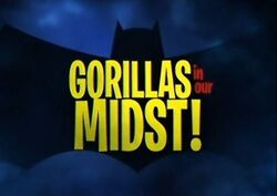 Gorillas in Our Midst!.jpg