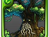 Großbaum Alneu