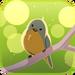 Avatar Spring Songbird.png