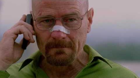 "Breaking Bad - ""Face Off"" Ending"