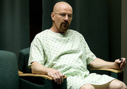 Episode-8-Walt.jpg