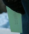 Brock Letter
